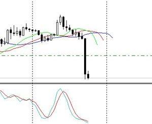 Форекс советы для правильной работы на валютном рынке
